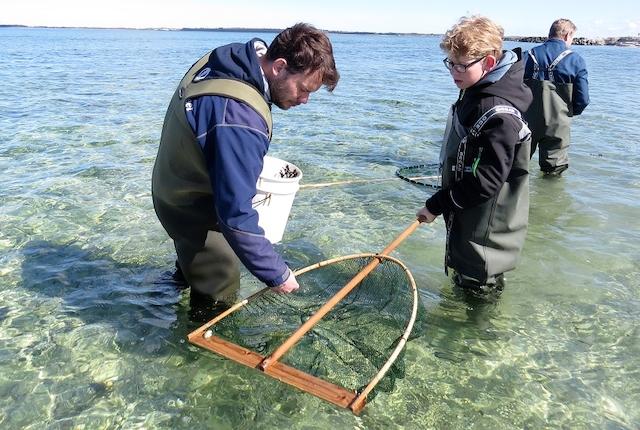 Fisker for en dag - Limfjordsmuseet i Løgstør